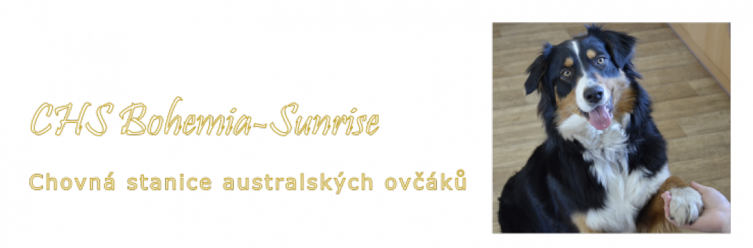 CHS Bohemia-Sunrise